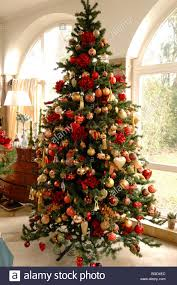 How To Decorate A Large Christmas Tree - christmas tree europe rainforest islands ferry