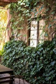 the best secret garden in barcelona gardenista