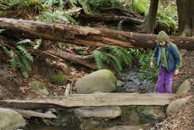 Rock Garden Bellevue by Best Spring Hikes In The Seattle Area For Kids And Families
