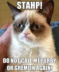 Stahp Meme - stahp do not call me furby cat meme cat planet cat planet