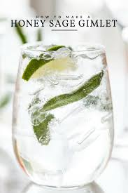 vodka tonic recipe classic gimlet recipe with honey and sage the sweetest occasion