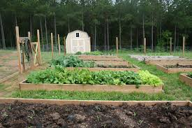 soil for raised bed vegetable gardens u2013 home garden joy