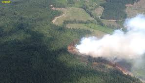 Canadian Wildland Fire Training by Forest Fire On Nanaimo U0027s Mount Benson Chek