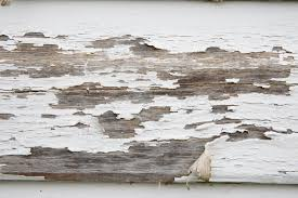 two very rough painted white wood textures www myfreetextures