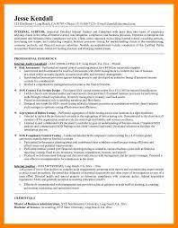 Internal Auditor Resume 100 Internal Audit Resume Director Internal Auditor Resume