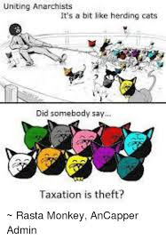 Herding Cats Meme - uniting anarchists it s a bit like herding cats did somebody say