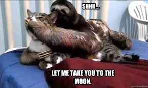 Rapist Sloth Meme - funniest best rapist sloth meme image quotesbae