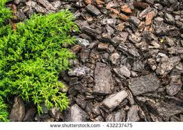 Landscaping Wood Chips by Stock Images Similar To Id 195367892 Bark Wood Chips