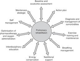 prescribing exercise training in pulmonary rehabilitation a