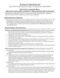 Edi Consultant Resume Bridal Consultant Job Resume Bongdaao Com