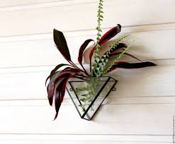 Buy Planters Buy The Floriana Geometric Hanging Wall Floriana Prism On