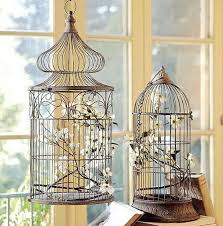 home interior bird cage decorating with bird cages best 25 bird cage decoration ideas on