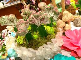 bloggers in bloom and arkansas flower and garden show giveaway