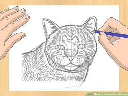 how to draw a good picture 12 steps with pictures wikihow