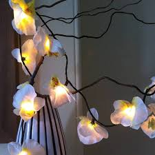 Dragonfly String Lights by White Orchid U0027 Led Fairy Lights By The Forest U0026 Co