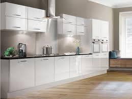 kitchen gray modern kitchen alongside white glossy kitchen