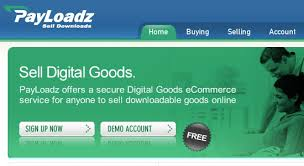 how to sell digital goods online like a pro and earn income fbwh