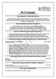 Resume Writing Example by Professional Resume Service Resume Example
