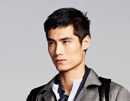 Short Hairstyles For Men With Thick Hair Men U0027s Short Haircuts For 2017