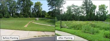 Retention Pond In Backyard Understanding Stormwater Ponds Wet Ponds Dry Ponds And