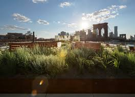awesome landscape architecture firms nyc home decor interior