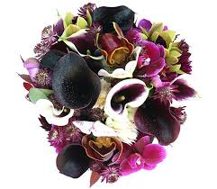 flower delivery san francisco san francisco florist flower delivery by not just flowers