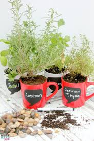 diy garden ideas coffee mug herb garden tutorial must have mom
