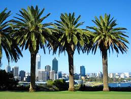 10 top rated tourist attractions in perth planetware