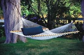 everything you have ever wanted to know about hammocks little