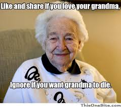 Meme For Grandmother - how i killed my grandmother