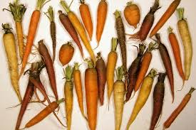 Spanish Root Vegetables - history of carrots a brief summary and timeline