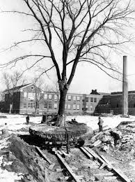 to turn a schoolyard into photo gallery a history of glencoe chicago tribune