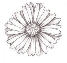 big daisy with butterfly tattoo design photos pictures and