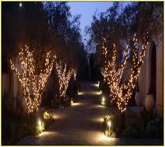 lights in trees design decoration