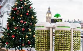 how to light a christmas tree using brussels sprouts telegraph