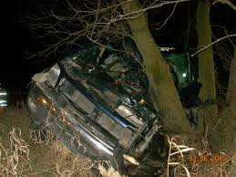 man killed when truck crashes into tree mlive com