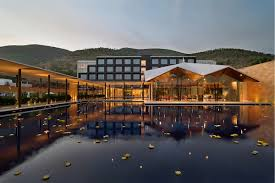 opulent splendor at foothills of saptagiri luxurious dasavatara hotel