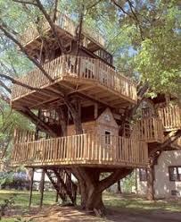 Tree House Home Modern Eco Friendly Homes Set Amongst The Trees Designrulz Com