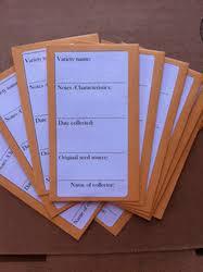 seed envelopes seed storage envelopes pack of 10