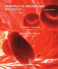 Download Ross And Wilson Anatomy And Physiology 22 Best Medical Books Free Download Images On Pinterest Medical
