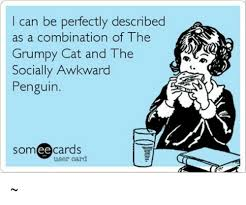 Meme Socially Awkward Penguin - can be perfectly described as a combination of the grumpy cat and