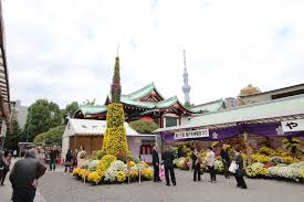 November Tokyo by Chrysanthemum Festival 2016 At Kameido Tenjin Shrine Amuzen