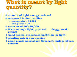 Is Light Energy Light Plant Science Chapter 8 What Is Light Energy That