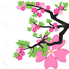 top cherry blossom tree japanese file free