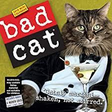 Grumpy Cat Mini Wall Calendar - great gifts for cat lovers bad cat calendars 2018