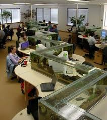 Zig Zag Reception Desk Water Wonderful View Incredible Zig Zag Office Aquarium Makes You