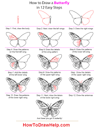 easy to draw butterflies butterfly drawing easy methods how to