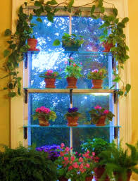Kitchen Window Shelf Ideas Nature In Your Window Beautiful Window Garden Ideas Allarsh