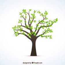 árvore com folhas verdes family trees