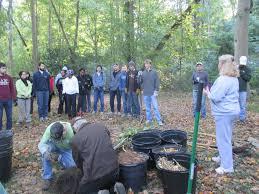 druid civic association trees atlanta planting a big success